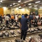 Tsukiji, el mercado de pescado más grande del mundo